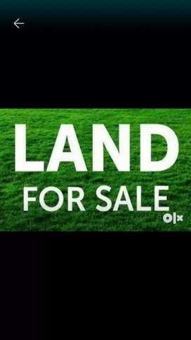 2 kattha 10 lusa miyadi patta land for sale near Charigaon oil