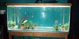 Aquarium + Meja + Tutup