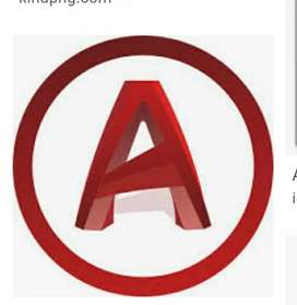 AutoCAD aavde avi person (male/female both apply)