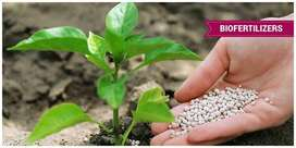 Wanted Technicians for Biofertilizer unit in Pondicherry.