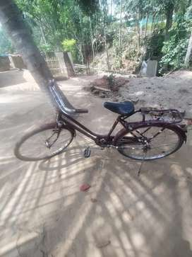 My small bicycle