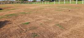 Open Plots at only Rs.350000 Near MNC Companies