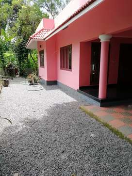 3bhk house near Govt Hospital Kunnumbhagom, Kanjirappally. For rent