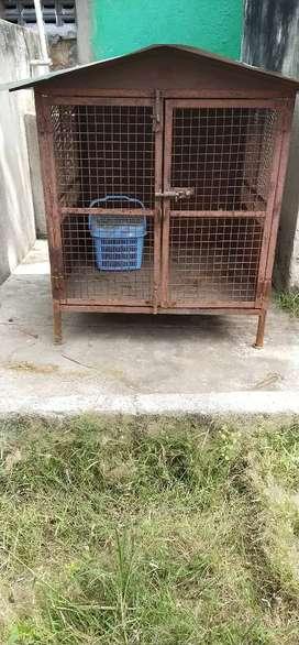 Dog home house