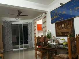 New luxurious 3BHK flat for rent at shakthinagar, kulshekar