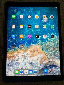 Ipad pro 12.9 inch 256gb wifi plus cellular new replacement peice