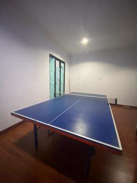 Meja ping pong masih mulus jarang dipakai beserta net nya