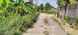 Tanah Bagus luas 10 Are di Pererenan, Canggu