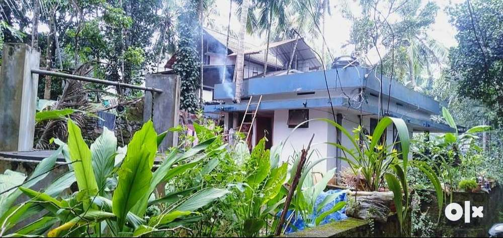 5 cent land and a 2 bhk old house