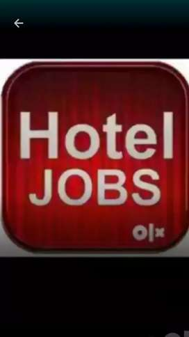 Job in 5 star hotel in dehli