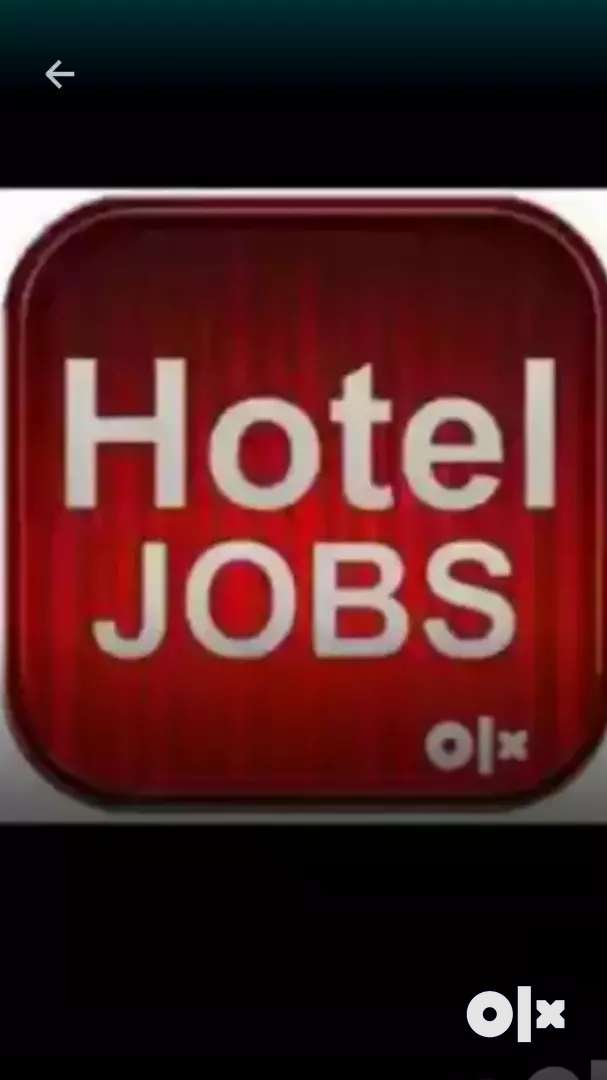 Job in 5 star hotel in dehli 0