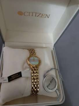 CITIZEN GOLD RAINBOW FOR WOMEN ECO DRIVE RARE ITEM