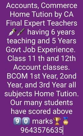ICom, BCom, 11th 12th Commerce Account Home Tutor