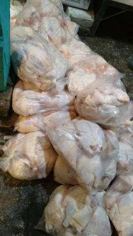 Ayam broiler potong segar murah pemotongan ayam