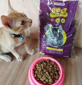 Bolt bentuk DONAT makanan kucing cat food ukuran 1kg