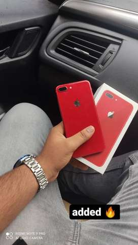 8 plus red colour    Only in 22000