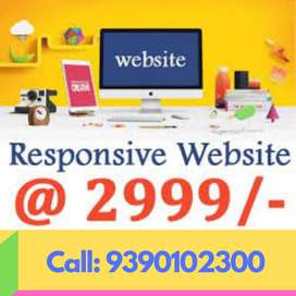 Small Business Website at 3499 Rupees Only