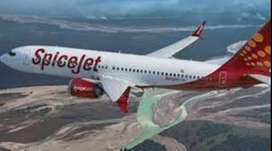 spice jet airlines Hiring for full time job on roll vacancy  Airlines