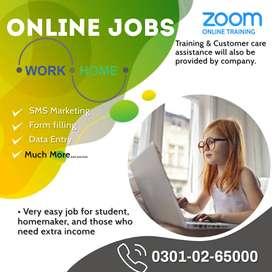 . Data entry job work from home for online working in our company