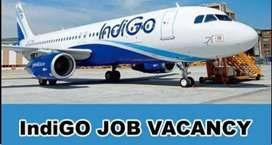 We are urgently required for Ticketing Executive in Jabalpur Airport