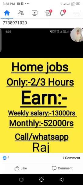 Home job work