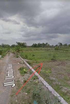 Tanah Murah View Sawah Cocok Restp/Villa di Jln Palagan km 9