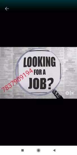Opening vacancies for computer operator