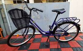 Cosmic Maple Bicycle for Sale (8months Old) Barely Used