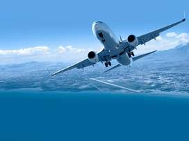 APPLY FOR GROUND STAFF JOB IN AIRLINES