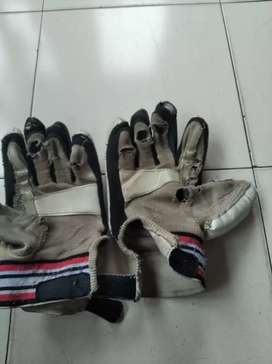 This is a cricket gloves company of GS