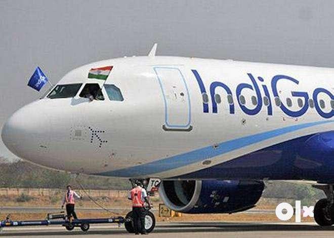 URGENT HIRING FOR INDIGO AIRLINE 0