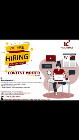 We Hire a content writer female