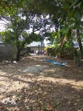 5.5 cents between Fort Kochi Thoppumpady Route Pappangamukku Jn