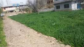3-4 Kanal Land available for rent in the heart of Abbottabad