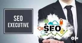Freshers Digital Marketing Or SEO Intern