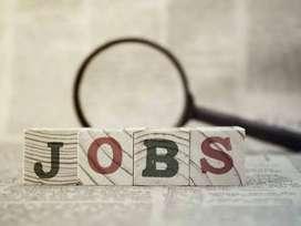 Jobs in ludhiana