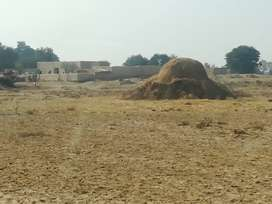 84 canal land which can also be sale in shape of plots