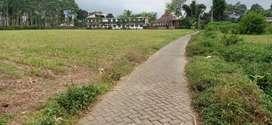 Tanah Luas dan Murah Strategis di Wajak Malang