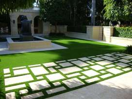 Exotic Artificial Grass at best rate - Starting from Rs. 50 per sqft
