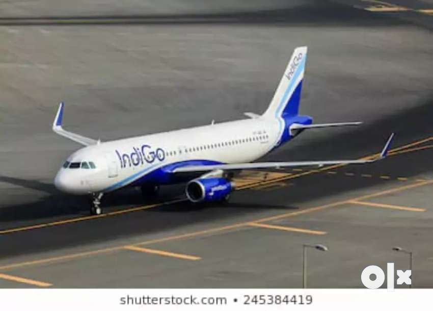 Urgent hiring for ground staff in IndiGo Airlines 0