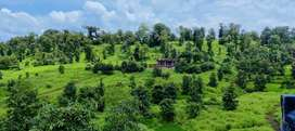 Ready Non Agricultural Plot for sale
