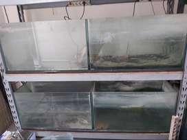 Jual Aquarium beserta Rak 3 set, borong abis