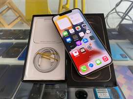 Iphone 12 Pro Max Gold 128 GB