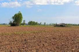 ujjain only 77600 rs me farm land ki rajistry karye seh rasi kiston me