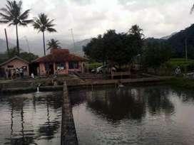 Jual kolam ikan dan rumah sertifikat hak milik
