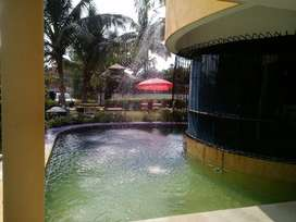 Swimming Pool Farm house for Rent at Surat-dumas