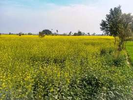 27 Acre land with road access in Sumbrial