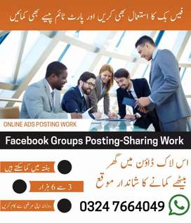 FA and matric  students need for Facebook job for media posting