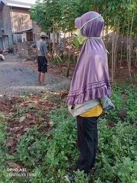 Jual Cepat Murah Tanah Siap bangun Ngaliyan Deket BSB city