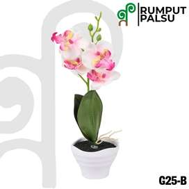 White & Pink Orchid Tembikar Pot / Anggrek Merah Muda dan Putih